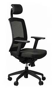 Fotel ergonomiczny SitPlus ERGON